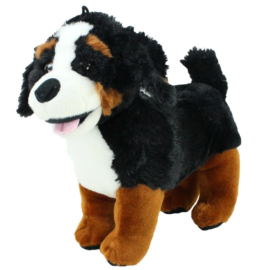 Berner Sennenhund ca 31 cm