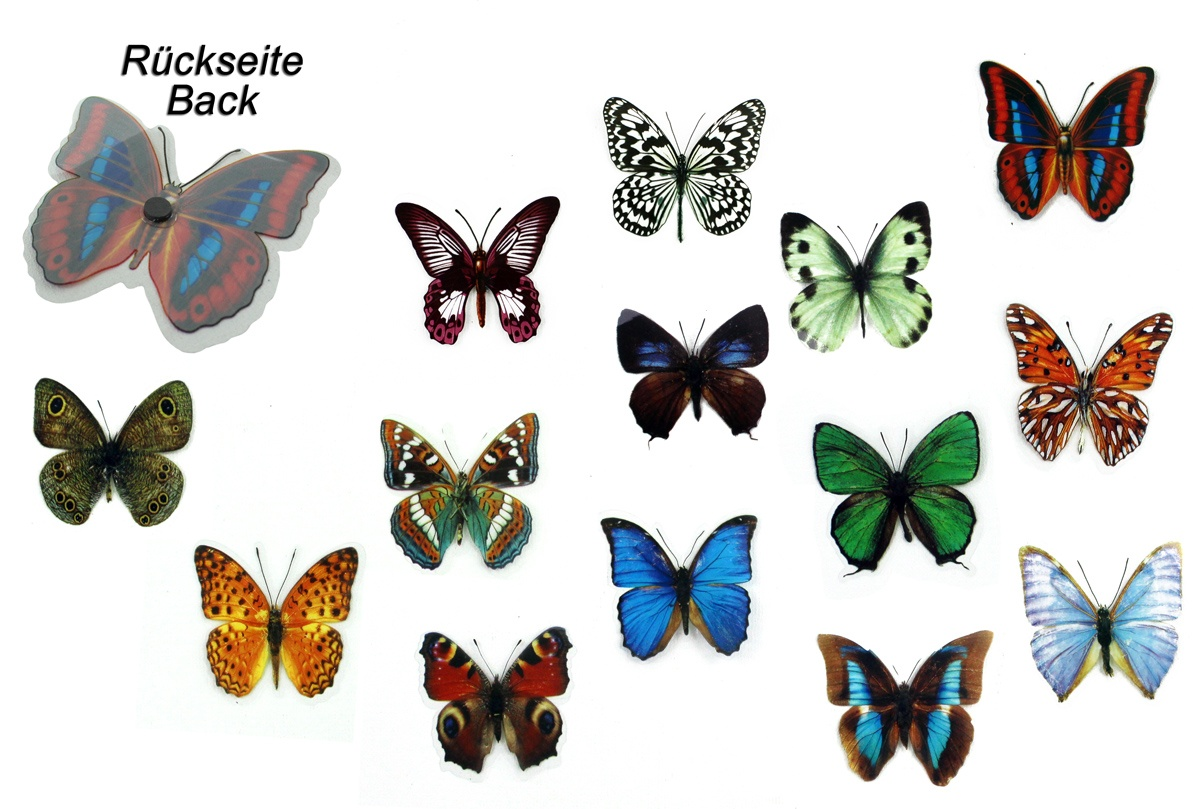 Magnet Schmetterling ca 7 cm