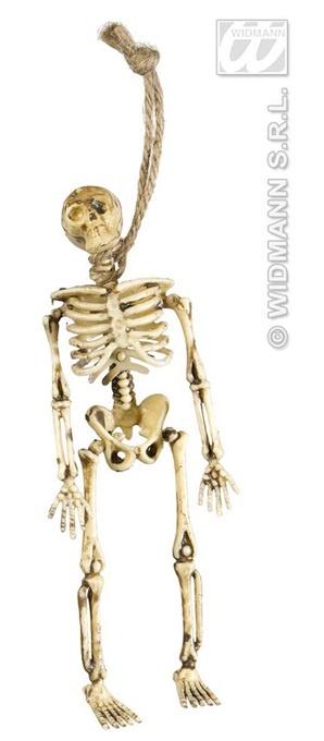 Skelett  3 Stück - ca 15 cm
