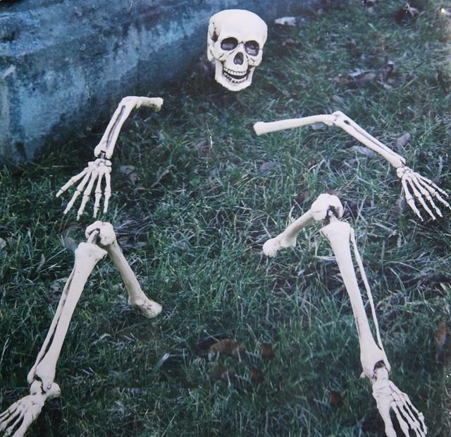 Skelettteile für die Rasendekoration