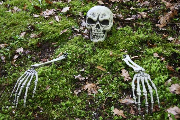 Skelettteile mit Erdspießen