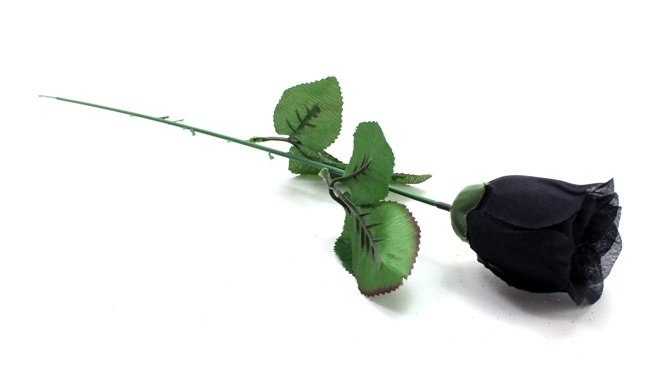 Baccara Rose schwarz geschlossen ca 55 cm
