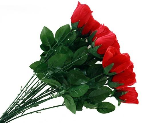 Baccara Rose ROT ca 65 cm