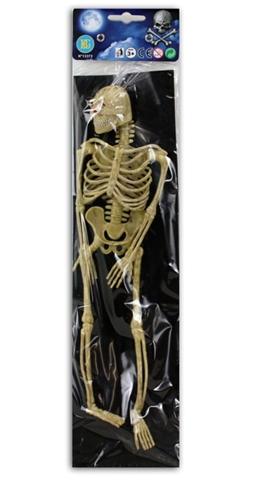 Skelett ca 32 cm