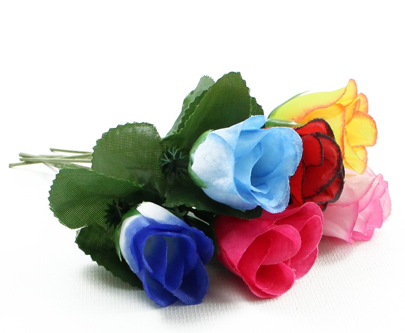 Heckenrose farbig sortiert - ca 17 cm