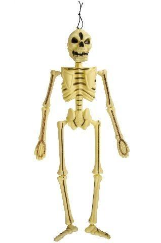 Skelett ca 53cm