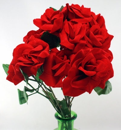 Rose -Vliska Rose  offen  ca 40 cm