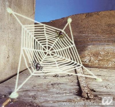 Spinnwebe mit 2 Spinnen - ca 27cm