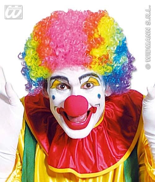 Perücke - Clownperücke multifarben